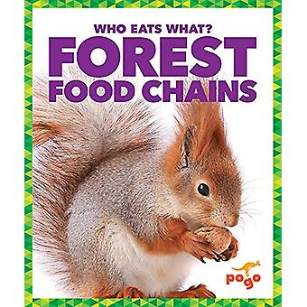 Forest Food Chains by Rebecca Pettiford - 9781620315743 Book