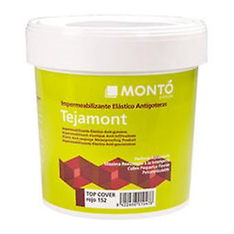 Monto pinturas Tejamont top cover Red (DIY , Painting , Insulation and waterproofing)