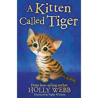 A Kitten Called Tiger by Holly Webb - Sophy Williams - 9781847157881