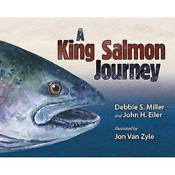 A King Salmon Journey