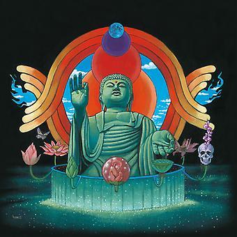 Jalal Salaam X Ewonee - Past Lives [Vinyl] USA import