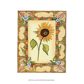 Frans land zonnebloem II Poster Print by Jennifer Goldberger (11 x 14)