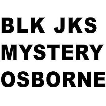 BLK Jks - mysteriet (Osborne Remix) [Vinyl] USA importerer