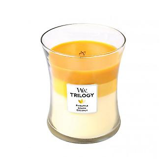 Woodwick Medium Glas Kerze Früchte der Sommer-Trilogie