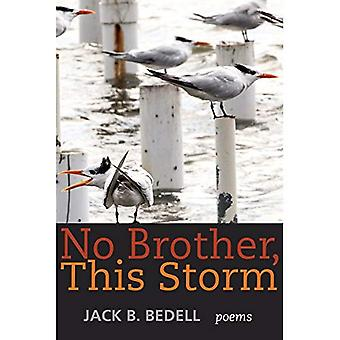 No Brother, This Storm: Poems