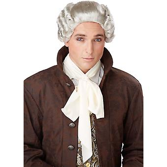 大人のための 18 世紀の灰色の Peruke