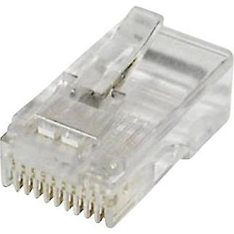 Modular plug Plug, straight Number of pins: 10 MPL10/10R Clear econ connect MPL10/10R 1 pc(s)