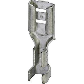 Phoenix Contact 3240155 Blade receptacle Connector width: 4.8 mm Connector thickness: 0.8 mm 180 ° Not insulated Metal