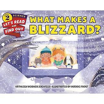 ما الذي يجعل عاصفة ثلجية؟ قبل كاثلين Weidner زويهفيلد-9780062484727 ب