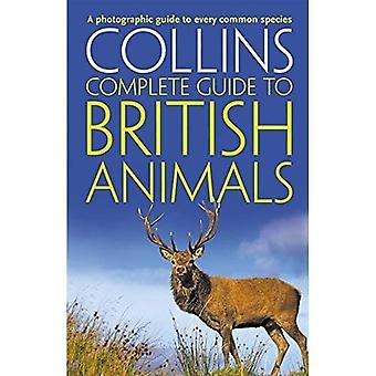 Guia completo de Collins para animais britânicos
