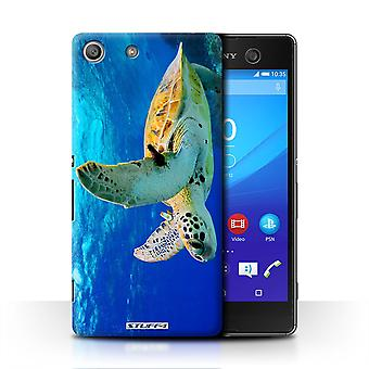 STUFF4 Case/Cover for Sony Xperia M5/Turtle/Wildlife Animals