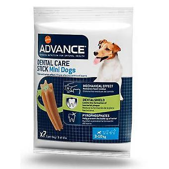 Advance Sample Yorkshire (Dogs , Treats , Dental Hygiene)