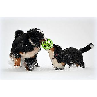 JW Pet Hol-ee Roller Rubber Dog Toy