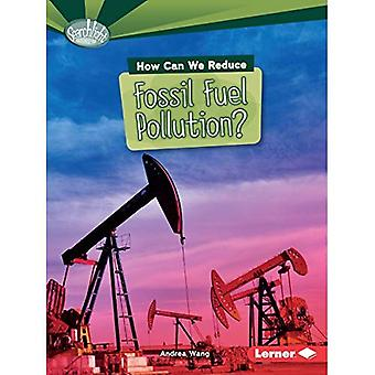 How Can We Reduce Fossil Fuel Pollution? (Searchlight Books What Can We Do about Pollution?)