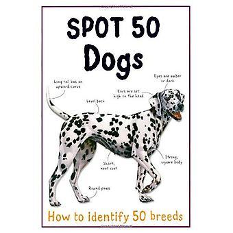 Spot 50 chiens (grande tache 50 série)
