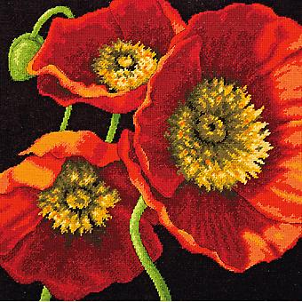 Red Poppy Trio Needlepoint Kit 14