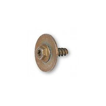 Motor Retaining Screw