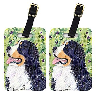 Carolines tesouros SS8706BT par de bagagem 2 Bernese Mountain Dog Tags