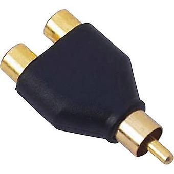 RCA adapter Sinuslive Y1M [1x RCA plug (phono) - 2x RCA connector (phono)]