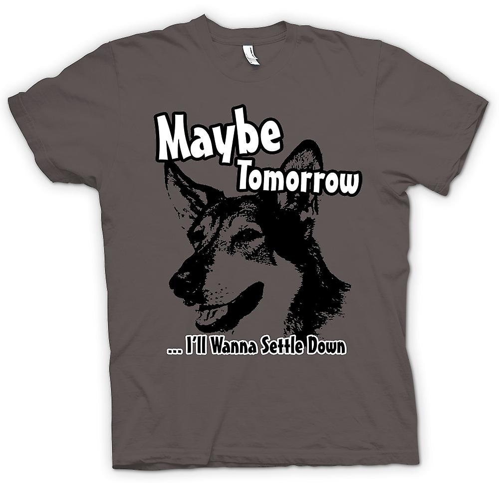 Heren T-shirt-kleinste Hobo - Maybe Tomorrow - Funny