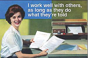 I Work Well With Others, As Long As They... funny fridge magnet  (ep)