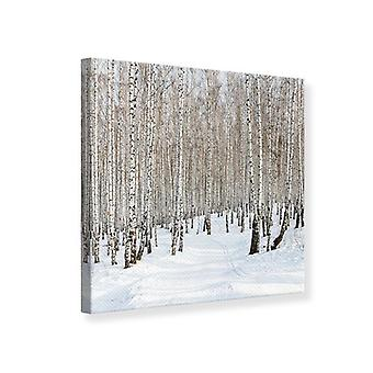 Canvas Print Birch bospaden In sneeuw