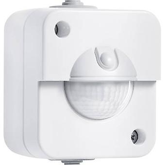 Wall, Surface-mount PIR motion detector Steinel 750213 180 ° Relay Agate grey IP54