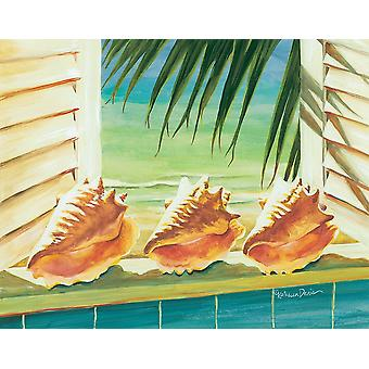 Conched Out Poster Print by Kathleen Denis