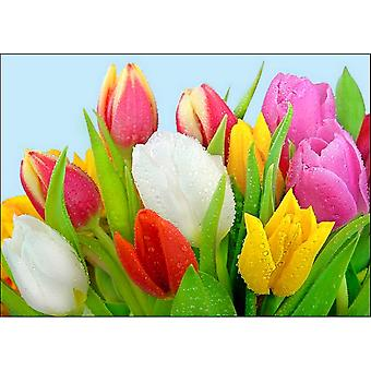 Collection D'art Diamond Embroidery/Printed/Gem Kit 27X38cm-Dew On Tulips