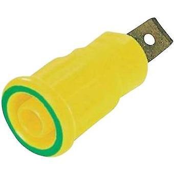 Safety jack socket Socket, build-in Green-yellow Stäubli