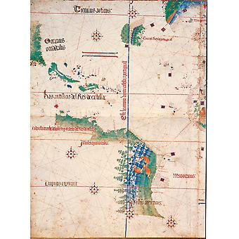 Unknown Artist South America And The Coastline Of Brazil With Some Parrots 1502 16Th Century Manuscript Italy Emilia Romagna Modena Estense Library Everett CollectionMondadori Portfolio Poster Print