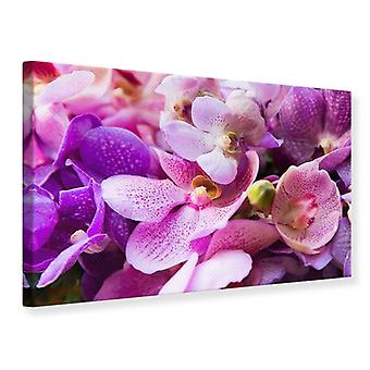 Canvas Print orchidee paradijs