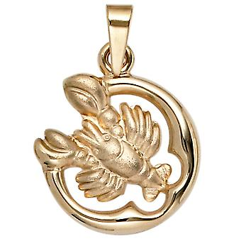 Zodiac sign cancer pendant star sign cancer gold yellow gold partially frosted