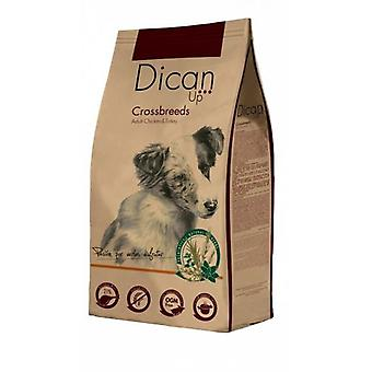 Dican Up Cibo Secco per Cani Cross Breeds