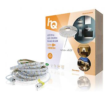 Tira de LED HQ caliente 24 W 1600 lm blanco