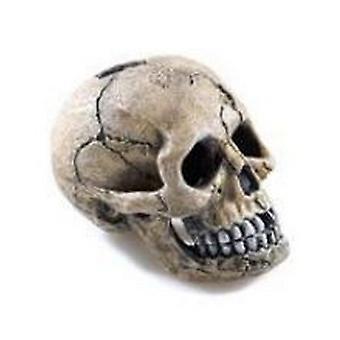 Klassieke Spooky schedel Ornament