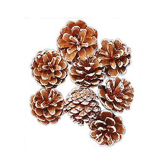 8 Frosted Tipped Pine Cones for Christmas Crafts