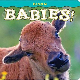 Bison Babies! (Babies! (Farcountry Press))