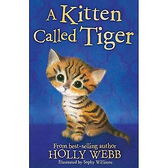 Eine Kätzchen namens Tiger - Holly Webb Tiergeschichten 37