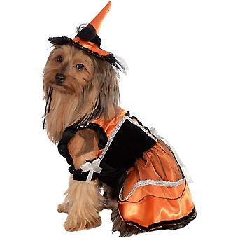 Orange Witch Pet Costume