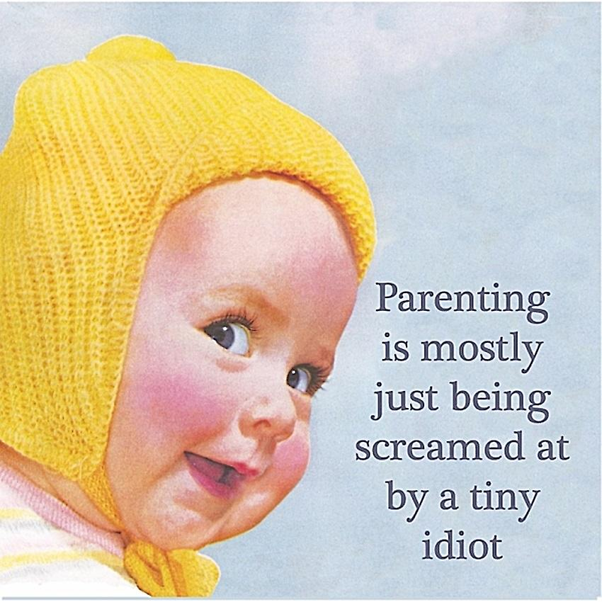 Parenting Is Mostly Just Being Screamed At.. single funny drinks coaster   (hb)