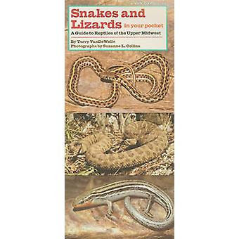 Snakes and Lizards in Your Pocket - A Guide to Reptiles of the Upper M