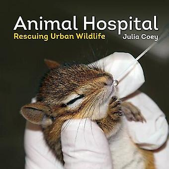 Animal Hospital - Rescuing Urban Wildlife by Julia Coey - 978177085572