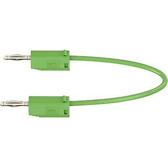 Test lead [ Banana jack 2 mm - Banana jack 2 mm] 0.3 m Green St