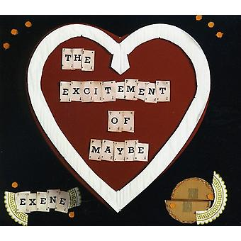 Exene Cervenka - Excitement of Maybe [CD] USA import