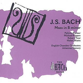 J.S. Bach - J.S. Bach: Massen i B mindre [CD] USA import