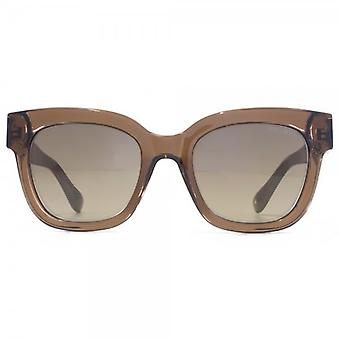 Jimmy Choo Ornate Diamante Temple Sunglasses In Translucent Brown