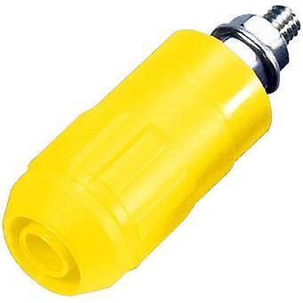 Stäubli XUB-G Jack socket Socket, vertical vertical Pin diameter: 4 mm Yellow 1 pc(s)