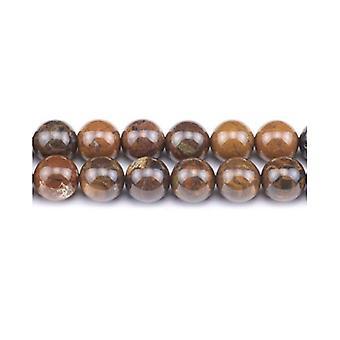 Aktionsbereich 40 + braun Enstatit 8mm einfache Runde Perlen GS2876-3