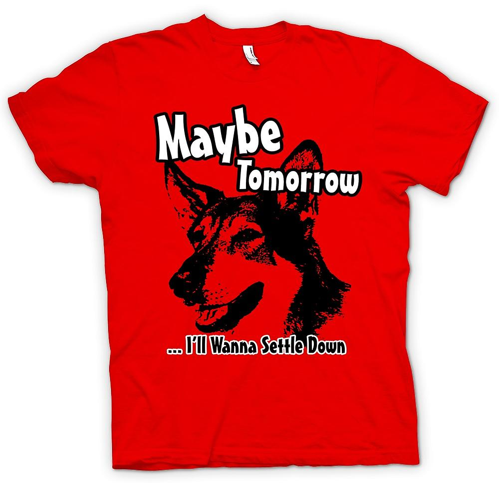 Mens T-shirt - Littlest Hobo - Maybe Tomorrow - Funny